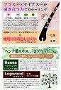 【火曜日限定!楽天ポイント8倍相当】タイヨーモデム ビューティーシャンプー ブラウン 300ml×6本セット(日用品・ヘアケア)【RCP】