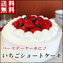 バースデーケーキ 誕生日ケーキ いちごショートケーキ ^k 神戸スイーツ ポイント  倍 2017