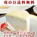 母の日 スイーツ 花 セット ギフト 2種類のチーズ ドゥーブルフロマージュ(Wチー