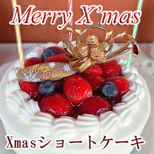 【クリスマスケーキ】 いちごショートケーキ ^k 神戸スイーツ ポイント10倍 2017 送料無料 子供 キッズ 女の子 男の子 苺 イチゴ  10P10Nov17 デコレーションケーキ ギフト  ird-xmas 早期予約 お歳暮