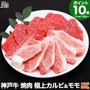 【P10倍 16日am2時まで】神戸牛 焼肉 セット 極上 カルビ &モモ 800g(冷蔵)【送料