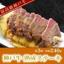 やわらか〜い♪神戸牛 熟成ステーキ 3枚【RCP】