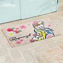 Disney Mat Collection ディズニー 玄関マット Rapunzel/ラプンツェル 50 × 75 cm | 屋外 外 ベージュ 洗える 丸洗い 薄型 おしゃれ かわいい ずれない 滑り止め エントランスマット ドアマット 国産 日本製 クリーンテックス製 【送料無料】
