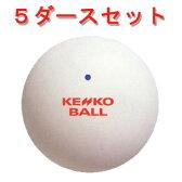 ケンコー ソフトテニスボール ナガセケンコー(5ダースセット)《公認球》
