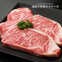 九州産国産牛サーロインステーキ用肉【500g(250g×2枚...