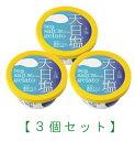 【3個セット】天日塩ジェラート3個/高知アイス【RCP】