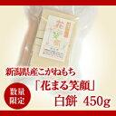 【数量限定】新潟県産こがねもち「花まる笑顔」白もち480g(9枚入)/-