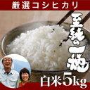 【新米】南魚沼産コシヒカリ「至純の一穂」白米 5kg新潟産/...