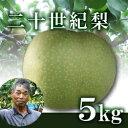 【18年予約】二十世紀梨5kg箱(生産者・片山)/-...