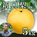 新興梨5kg箱(生産者・片山) / -