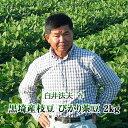 【2020年予約】新潟県産 黒埼産茶豆 ぴかり茶豆2kg箱お中元 ギフト(生産者・白井)