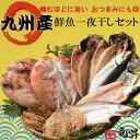 驚愕の半額に♪開始5時間が最もお得♪【送料無料】九州産鮮魚一...