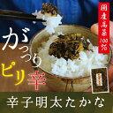 辛子明太たかな120g福岡県産高菜100%使用 ご飯のお供にお茶漬けに 酒の肴にも 【SS】佃煮 通