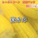新物!嶽きみ真空パック Lサイズ お徳用パック6本入り 29...