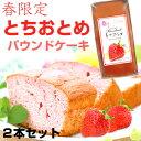 【春限定】老舗料亭 中森亭プロデュース とちおとめパウンドケーキ2個セット いちご