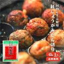国産生姜使用 紅しょうがみじん切り 45g×5  『 生姜 国産 』