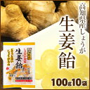 高知産生姜使用 生姜飴 100g×10袋【まとめ買い】