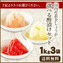 【送料無料】国産生姜使用 選べる酢漬けセット1Kg×3 【甘酢しょうが/がり/紅しょう