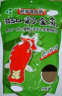 ♭ ♪ ♪ 失蹤金魚胚胎髮展 SS 浮動 500 g sallbo [♭]