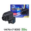 カミハタ リオプロップ 6000 50Hz(東日本用) 水流専用ポンプ 淡水・海水用【♭】