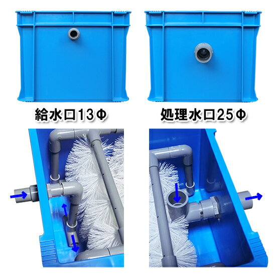 100〜400L水槽用濾過槽+カミハタ リオ ...の紹介画像3