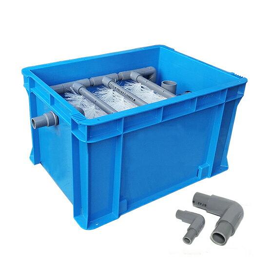 100〜400L水槽用濾過槽+カミハタ リオ ...の紹介画像2