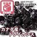 【宅急便送料無料】ドライカシス(カナダ産) 《1kg》ドライ...