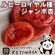 ショッピング日本一 カルフォルニア産 ルビーロイヤル品種:ジャンボあんず(アプリコット) 《200g》日本初上陸の新品種杏の品揃えは日本一を誇る専門店です。砂糖不使用 ドライアプリコット ドライあんず あんず ドライフルーツ