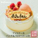 アイスケーキ お誕生日ケーキ 誕生日ケーキ バースデーケーキ 送料無料【アイスケー