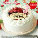 在庫一掃 お誕生日ケーキ 誕生日ケーキ 送料無料 5号 苺のショートケーキ  名入れサービス チョコ