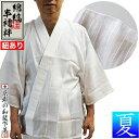 【夏用】『綿縞 半襦袢』(紐付き)身頃:薄手でサラサラ 綿100% 衿:絽3サイズ:男性用M/L/LL