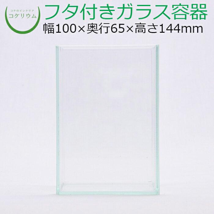 テラリウムガラス容器コケリウム苔コケ苔テラリウム苔リウムアクアリウムアクアテラリウム水槽観葉植物園芸