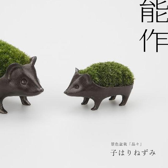子はりねずみの苔盆栽 /能作 小林健二 nous...の商品画像