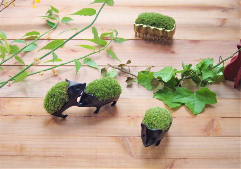 子はりねずみの苔盆栽 /能作 小林健二 nou...の紹介画像3