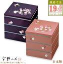 重箱 3段 大きめ 日本製 シール蓋付き大和三段重 19.5...