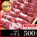 国産牛 ハラミ 500g【鹿児島】【黒毛和牛】【国産牛】【薩摩】【ホルモン】【サガリ