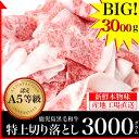 【送料無料】A5等級 鹿児島黒毛和牛 極上切り落とし 300...