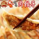 ショッピングギョーザ 【大粒 包味 肉餃子 -腕前三段-3セット】ぎょうざ