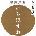 【キャッシュレス5%還元対象】いちほまれ 新米 令和元年 福井産 米5kg 送料無料