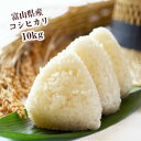 富山米 コシヒカリ 5kg×2袋 富山県産 令和元年産
