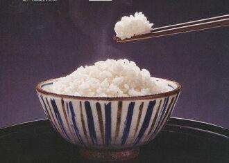 26 년 초 염가 야마가타 새 쌀 특별 재배 쌀 「 반짝 공주 」 10kg 홋카이도 ・ 오키나와 추가 요금 있음