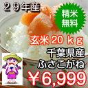 【29年産】千葉県産ふさこがね玄米20kg(10kg×2袋)...