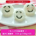 もっと生活応援米♪♪無洗米 10kg恵みに感謝米(5kg×2)送料無料わけあり