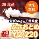 【29年産】千葉県産 ふさおとめ玄米5kg 送料無料♪精米無...