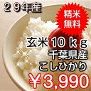 【29年産】千葉県産 コシヒカリ玄米10kg(5kg×2)生...