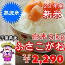 【29年産】新米入荷!無洗米 ふさこがね 5kgおいしい♪手間なし♪簡単♪※送料無料地域に除外があります※北海道・九州+400円