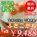 【29年産】千葉県産ふさこがね玄米30kg(10kg×3)無...