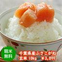 【30年産】千葉県産 ふさこがね玄米10kg(5kg×2)送料無料♪精米無料♪※送料無料地域に除外があります※北海道 九州: 400円