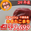 【29年産】新米!千葉県産 あきたこまち 玄米30kg精米無...