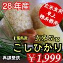 【28年産】千葉県産コシヒカリ 玄米 5kg送料無料♪精米無料♪ご愛顧感謝価格になりま